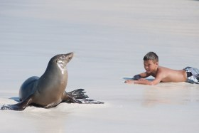 Galapagos_Family_LOW
